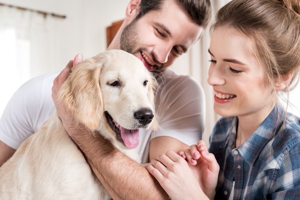 A happy couple with a retriever puppy