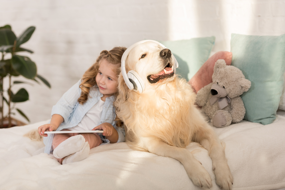 A golden retriever wearing headphones and sitting beside a little girl with a tablet on the bed