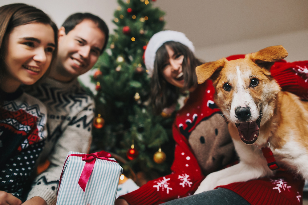 A smiling dog inside with a happy family and a Christmas tree