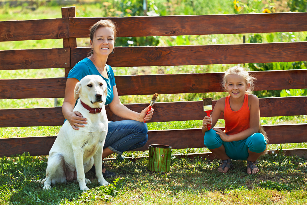 A family painting a wooden fence for their Labrador Retriever.