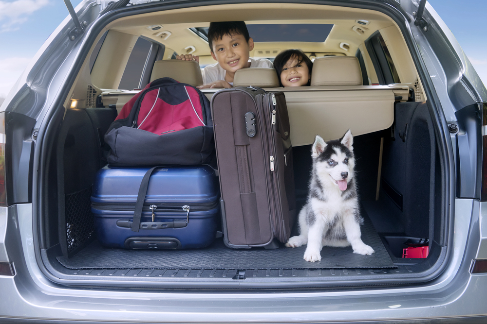 Dog in back of car with kids and luggage.