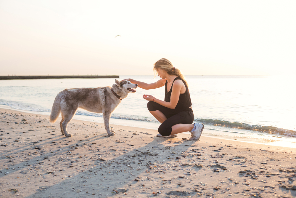 A woman is crouching to face her Siberian Husky on the beach