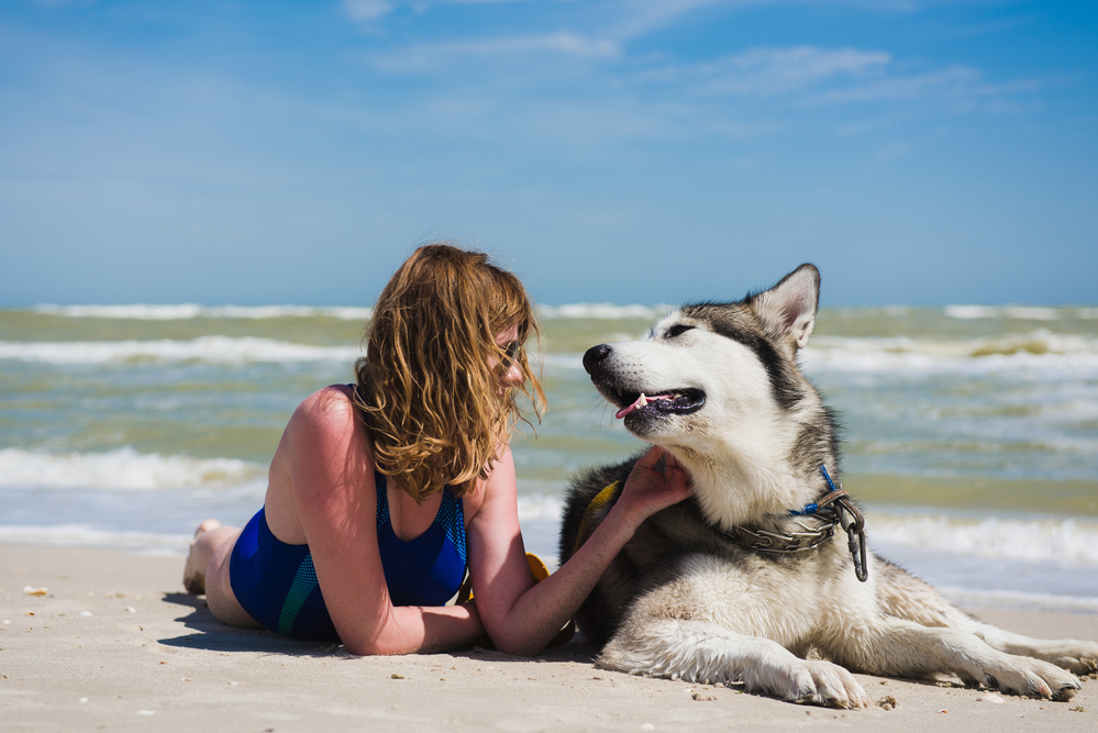 A husky and an owner enjoying the beach by the ocean.